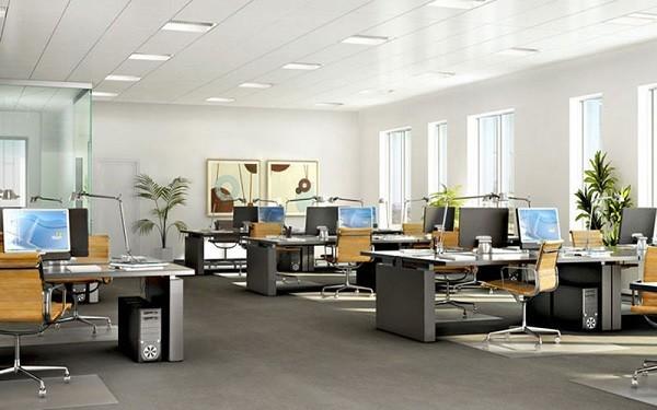 Văn phòng được tận dụng ánh sáng từ thiên nhiên